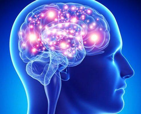 دوره فلوشیپ مغز و اعصاب :