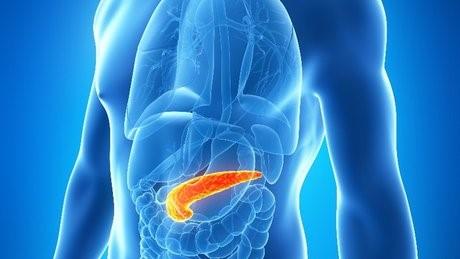 چگونه می توان واکنش بدن به انسولین را دفع کرد؟