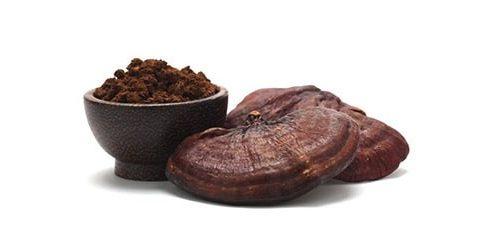 ارزش غذایی در قارچ گانودرما
