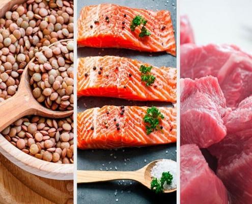 پروتئین به عنوان یک مواد مغذی مهم برای جلوگیری از ریزش مو در چه مواد غذایی یافت می شود؟