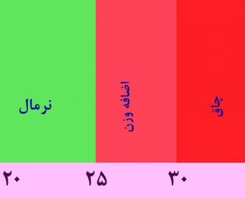 برای محاسبه شاخص توده بدنی یا bmi چه عواملی در نظر گرفته نمی شود؟