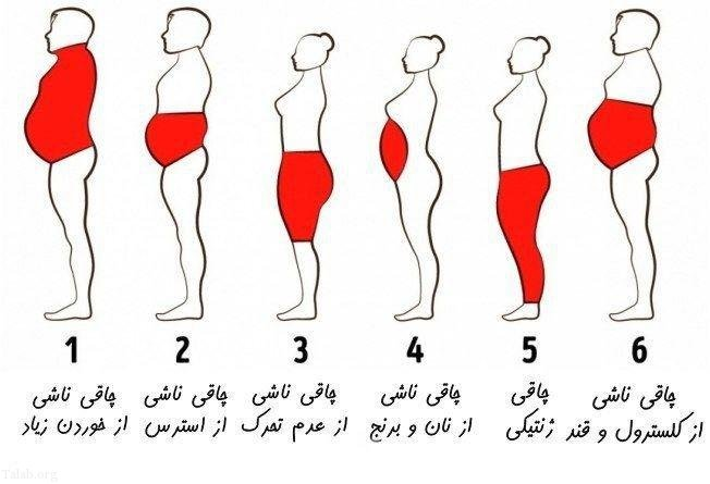 موارد کاربرد شاخص توده بدنی (BMI ) چیست؟