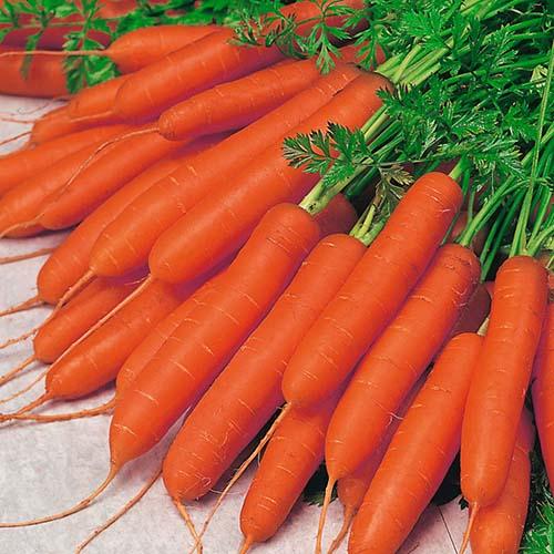 استفاده از کلم و هویج به صورت خام