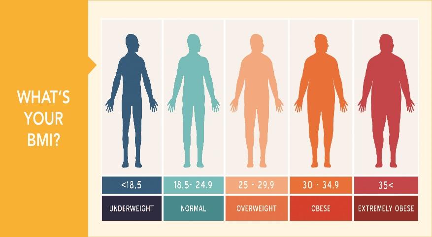 اعداد شاخص توده بدنی ( BMI ) به چه معنایی هستند؟