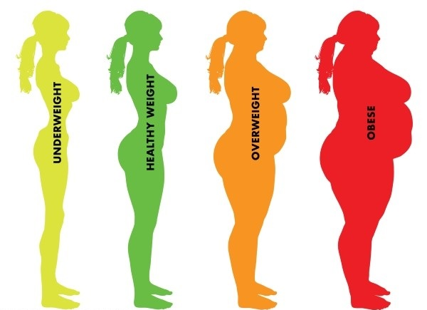صدک BMI وضعیت بدنی