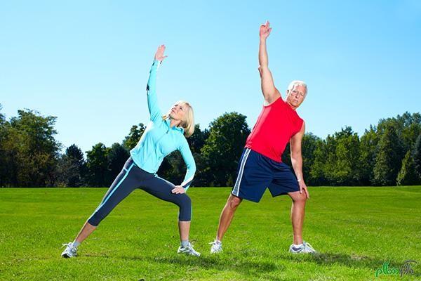 عادات و عامل های موثر در سبک زندگی را می توان به صورت زیر بر شمرد: