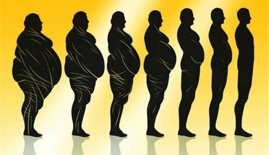عوامل تاثیرگذار بر ترکیب بدن