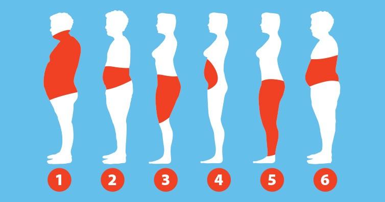 علت به وجود آمدن چاقی در اندام شما برای چیست؟