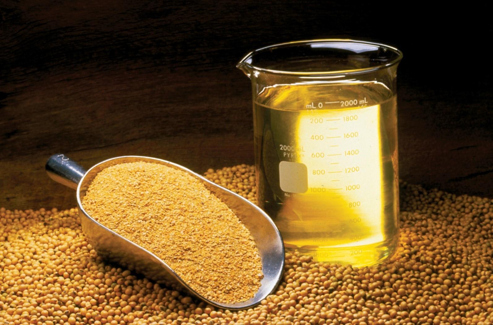 روغن سویا (Soybean oil)