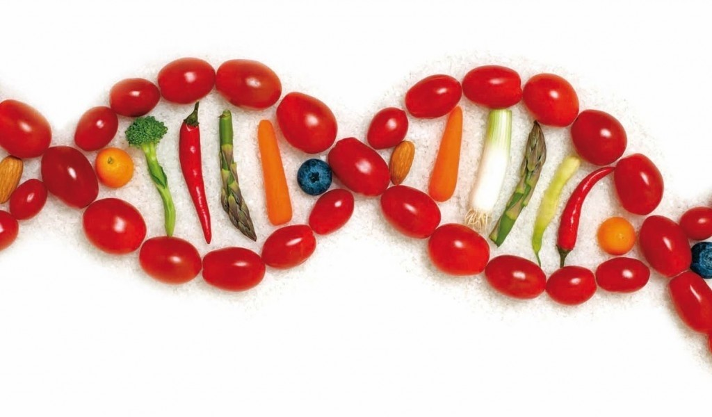 FTO GENE جهش یا توده چاقی انسانی و چاقی مرتبط: