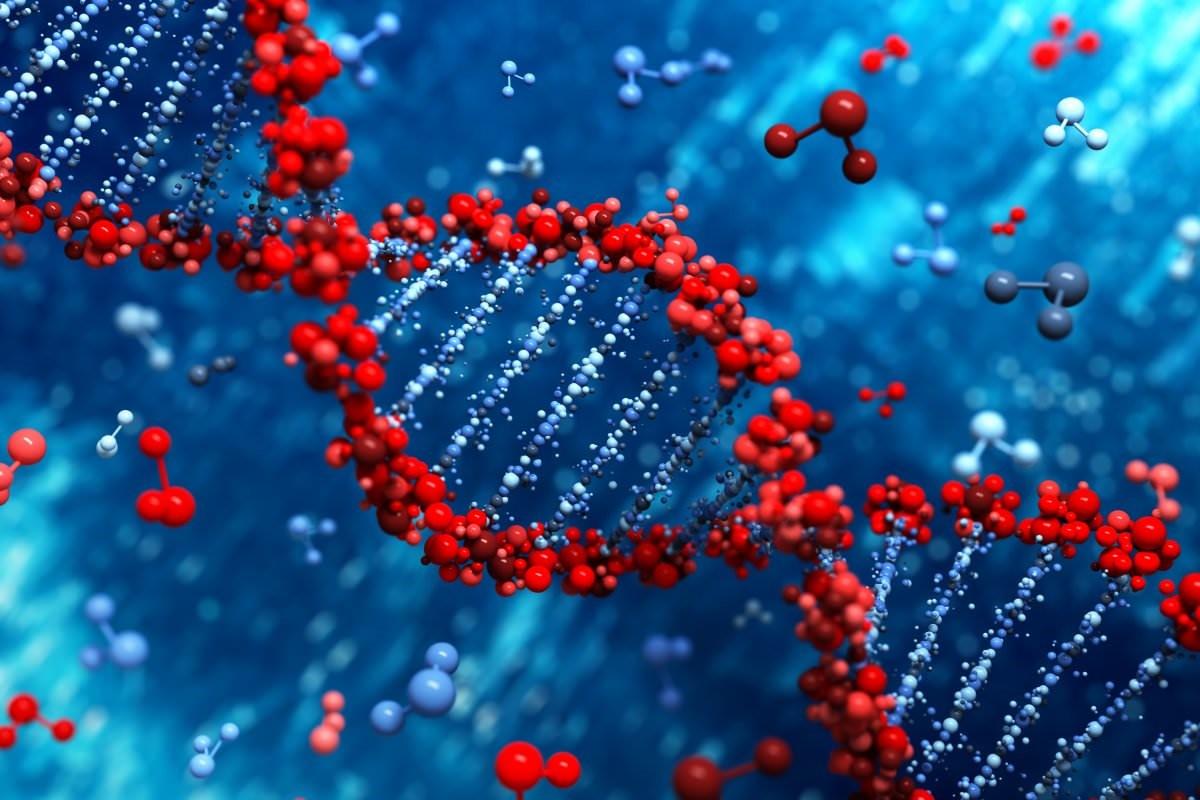 افراد حامل ژن FTO به طور متوسط 2 کیلوگرم بیشتر از افراد دیگر هستند
