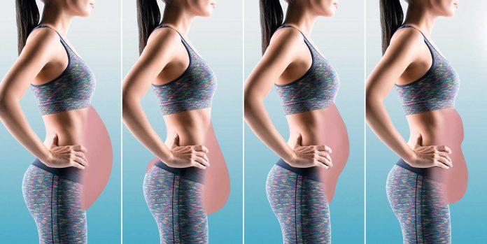 چاقی در قسمت پایینی شکم