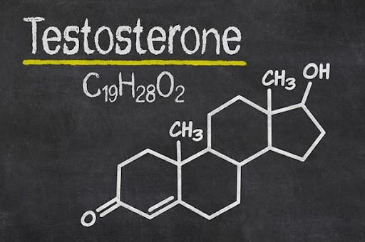تبدیل تستوسترون به استروژن